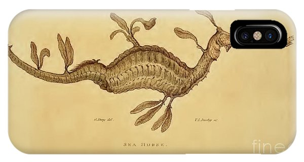 Sea Horse Phone Case by Busby