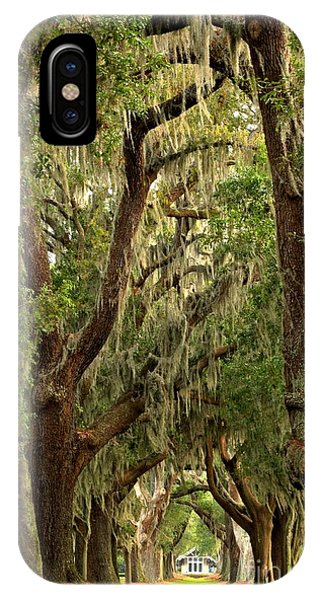 Sea Island Oaks Portrait IPhone Case