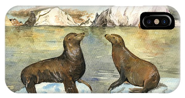 Sea Lions IPhone Case