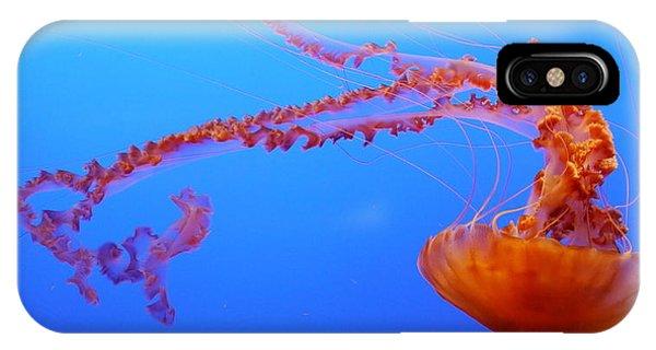 Sea Nettle Jellyfish IPhone Case
