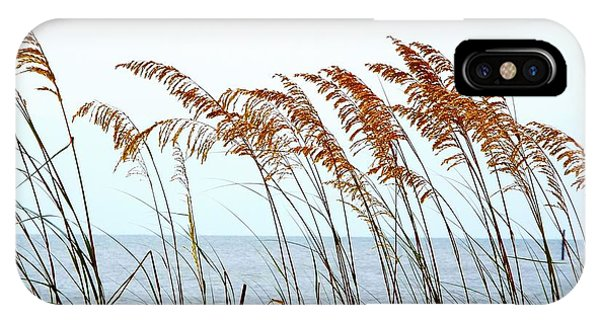 Sea Oats And Serenity IPhone Case