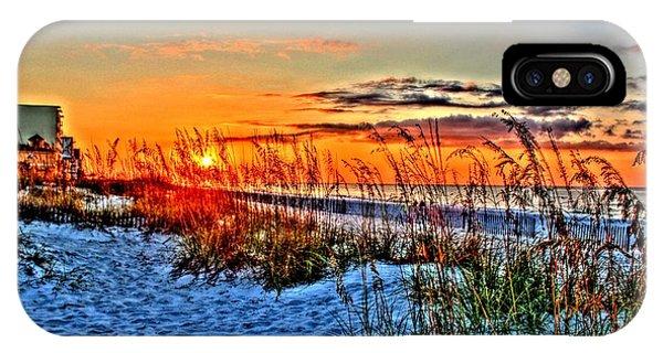Sea Oats At Sunrise IPhone Case