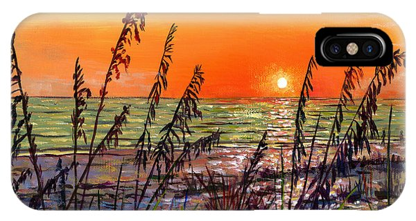 Sea Oats Sunset IPhone Case