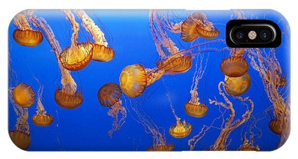 Monterey Bay Aquarium iPhone Case - Sea Of Sea Nettle by Brian Knott Photography
