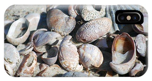 Sea Shells Phone Case by Alan Holbrook