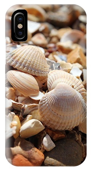 Sea Shells IPhone Case