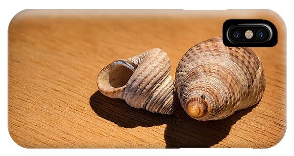 Sea Shells_3 Phone Case by Joe Hudspeth