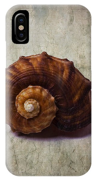 Shell Texture iPhone Case - Sea Snail by Garry Gay