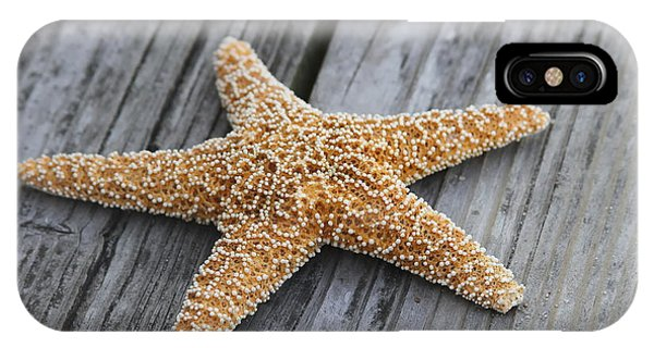 Sea Star On Deck IPhone Case
