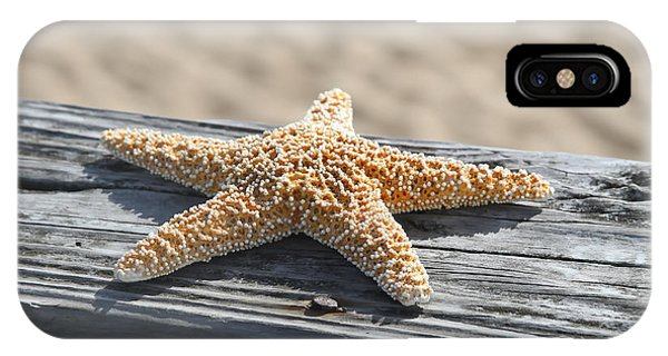 Sea Star On Railing IPhone Case