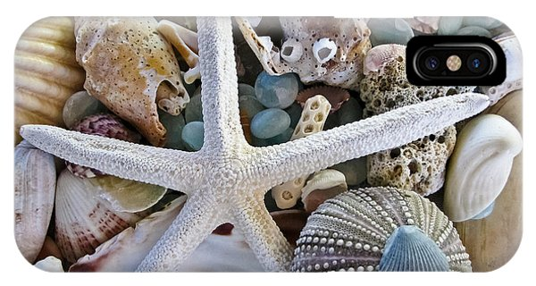 New Jersey iPhone Case - Sea Treasure by Colleen Kammerer