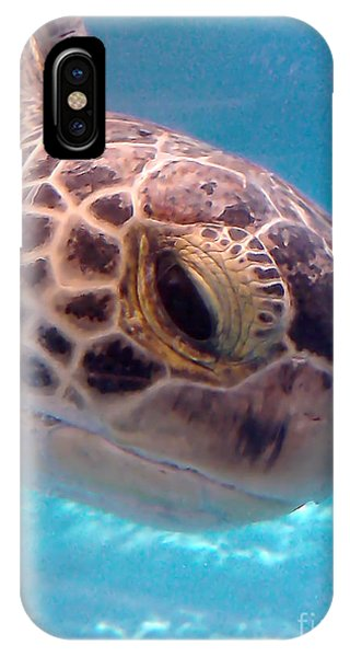 Sea Turtle IPhone Case