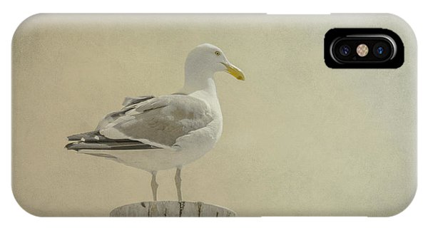 Seabird IPhone Case