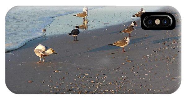Seabirds IPhone Case