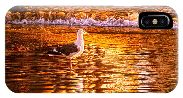 Seagul Reflects On A Golden Molten Shore IPhone Case
