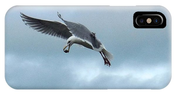 Seagull And His Breakfast IPhone Case