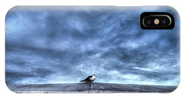 Seagull At Rest IPhone Case
