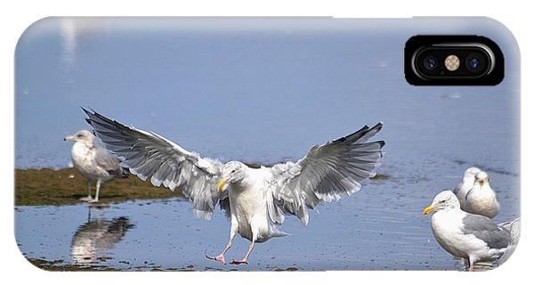 Seagull Landing Phone Case by Marsha Schorer
