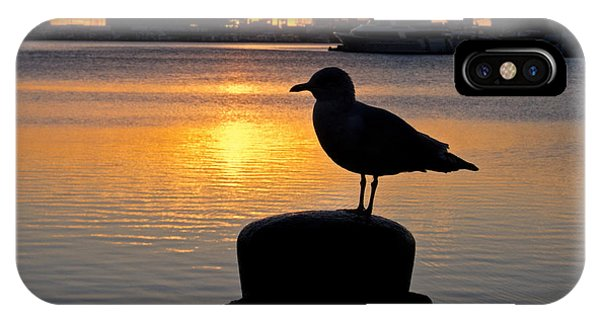 Seagull Silhouette Sunrise IPhone Case