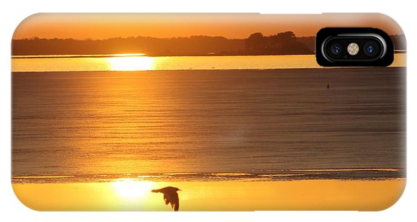 Seagull Through Sunset IPhone Case