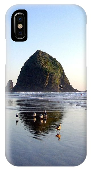 Seagulls And A Surfer IPhone Case