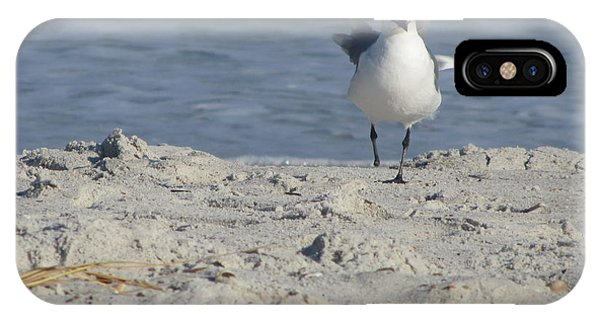 Seagulls At Fernandina 4 IPhone Case
