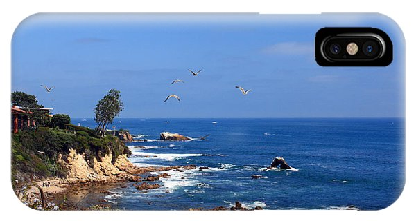 iPhone Case - Seagulls At Laguna Beach by Kelly Holm