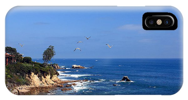 Seagulls At Laguna Beach IPhone Case
