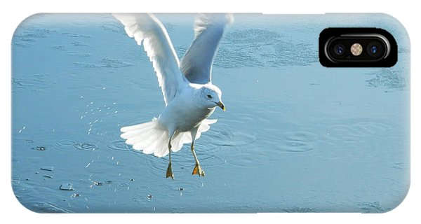 Seagull's Flight Out Of Icy Water IPhone Case