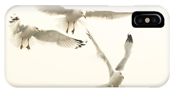 Seagulls Flight IPhone Case