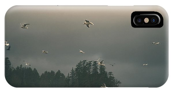 Seagulls In A Storm IPhone Case