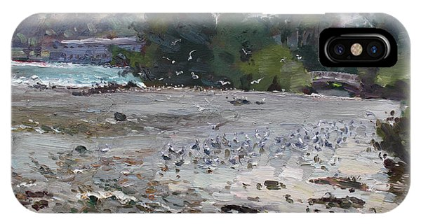 Seagull iPhone Case - Seagulls On Niagara River by Ylli Haruni