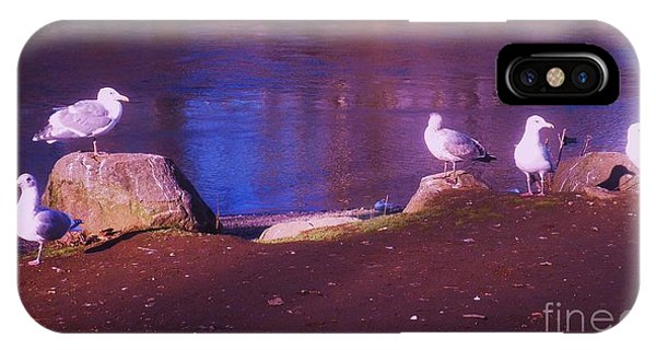Seagulls On The Willamette River IPhone Case