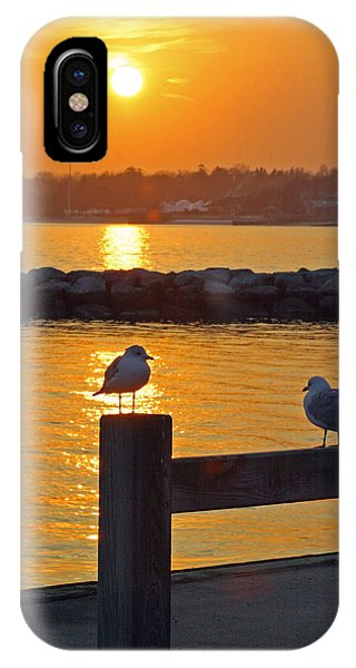 Seaguls At Sunset IPhone Case