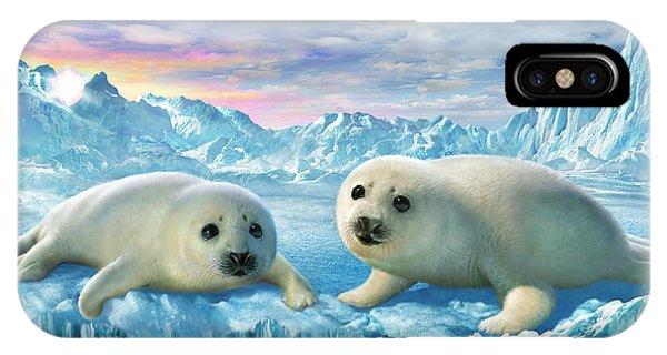 Seal Pups IPhone Case