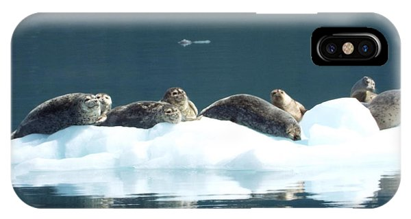 IPhone Case featuring the photograph Seal Reflections by Barbara Von Pagel
