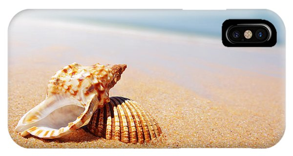 Sand iPhone Case - Seashell And Conch by Carlos Caetano
