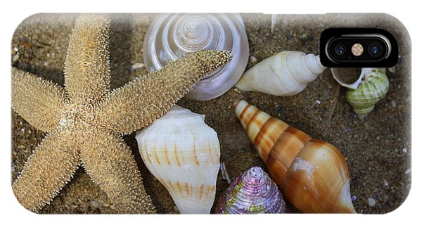 Seashells And Star Fish IPhone Case