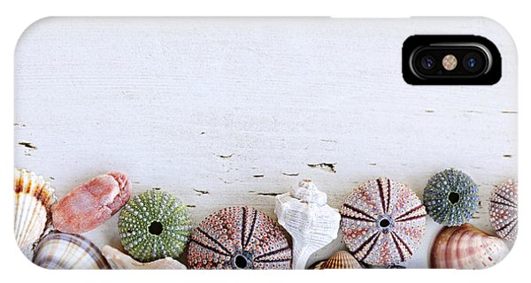 Seashells On Wood Background IPhone Case