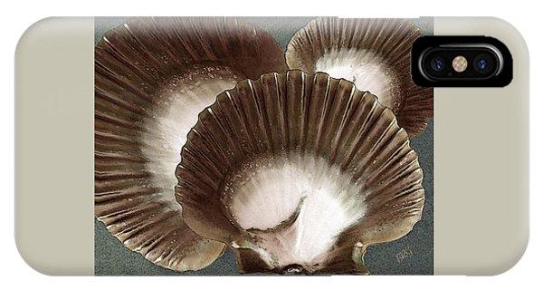 Seashells Spectacular No 22 IPhone Case