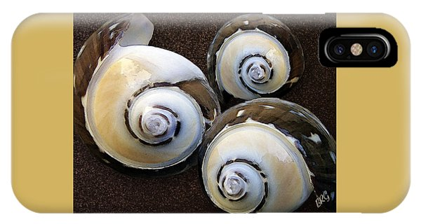 Shell Texture iPhone Case - Seashells Spectacular No 23 by Ben and Raisa Gertsberg