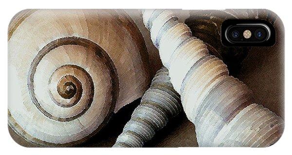 Seashells Spectacular No 24 IPhone Case