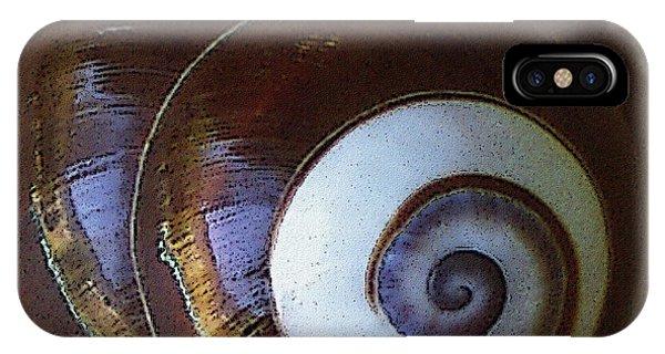 Seashells Spectacular No 26 IPhone Case
