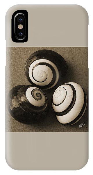 Shell Texture iPhone Case - Seashells Spectacular No 28 by Ben and Raisa Gertsberg