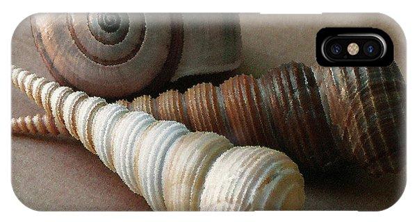 Seashells Spectacular No 29  IPhone Case