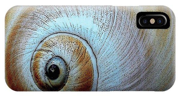 Seashells Spectacular No 36 IPhone Case