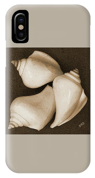 Seashells Spectacular No 4 IPhone Case