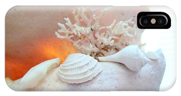 Seashells Study 3 IPhone Case