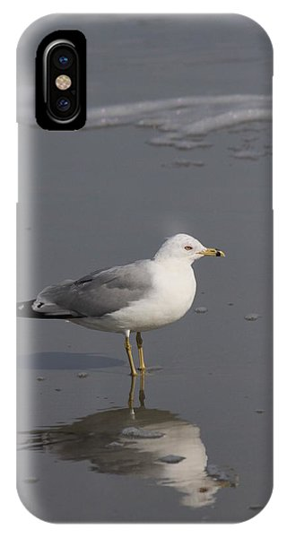 Seaside Sentinel IPhone Case