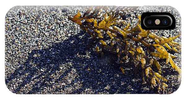 Seaweed Shadow IPhone Case